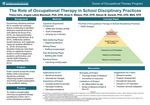 The Role of Occupational Therapy in School Disciplinary Practices